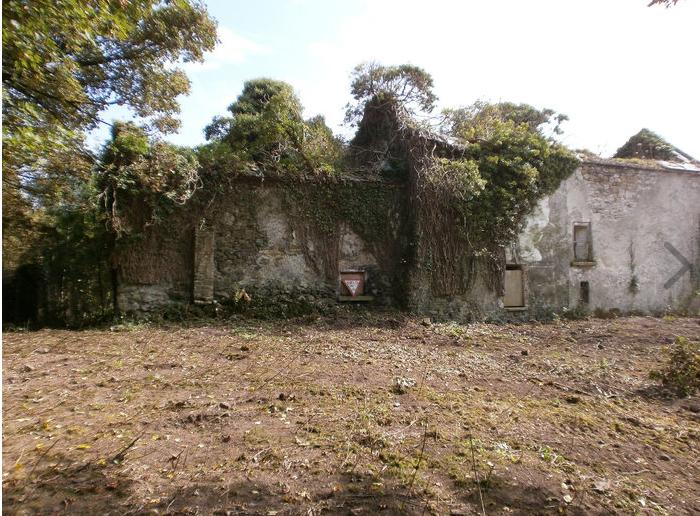Kilfoylan, Tober, Co. Offaly